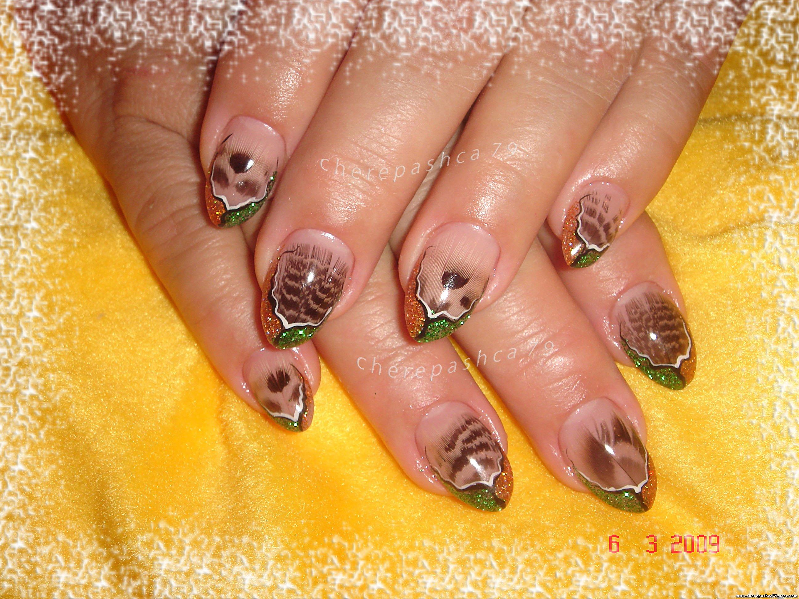 Перья в дизайне ногтей фото